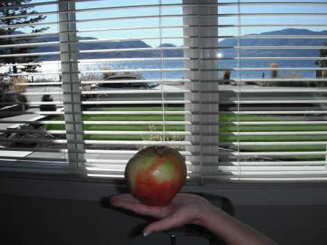 Peachland, Okanagan lake, apples, mountains, sunshine, autumn